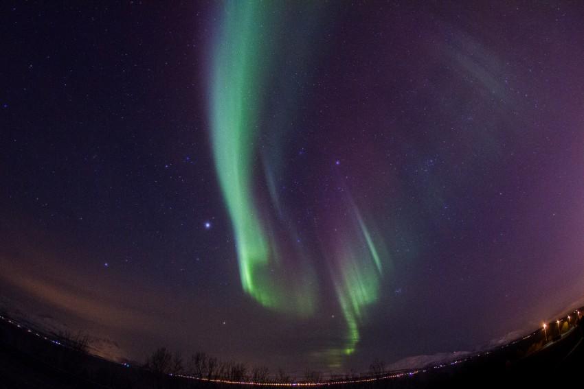 aurora2-por-claudia-regina