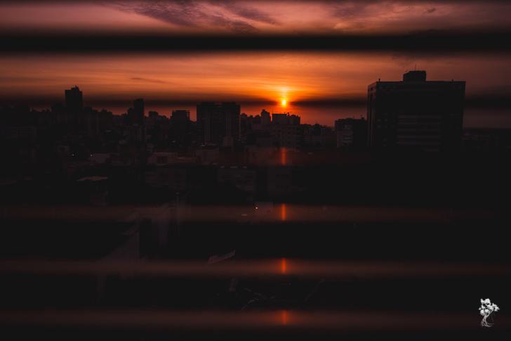 ISO 100 | 17mm | f/4 | 1/800segfoto por Claudia Regina